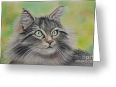 Soft Kitty Greeting Card