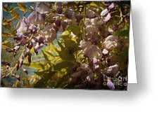Soft Pastel Spring Greeting Card