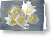 Softly Awake My Heart Greeting Card