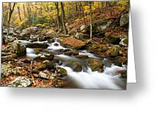 Softly Flowing Greeting Card
