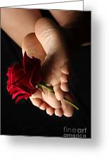 Sole Rose Greeting Card by Tos Photos