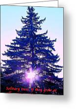 Solitary Trees Poster Greeting Card