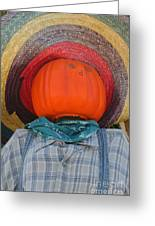 Sombrero Scarecrow Greeting Card