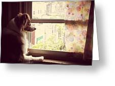 Somewhere In The Distance...a Puppy Greeting Card by Katie Cupcakes