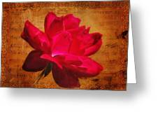 Song Of The Last Rose Greeting Card