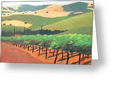 Sonoma Vinyard Greeting Card