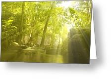 Soothing Rays Greeting Card