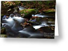 Soothing Waters  Greeting Card