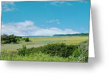 South Carolina Coastal Marsh Greeting Card