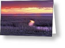 South Carolina Tidal Marshes Greeting Card