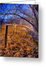 South Platte Fenceline Greeting Card
