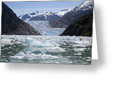 South Sawyer Glacier And Bay Full Greeting Card