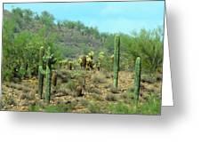 South West Desert Greeting Card