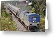 Southbound Amtrak Silver Star Greeting Card