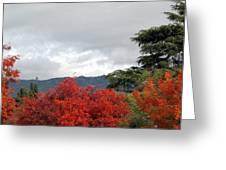 Southern California Fall Greeting Card