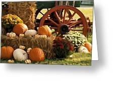 Southern Harvestime Display Greeting Card