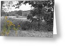 Southern Illinois Decolorized Greeting Card