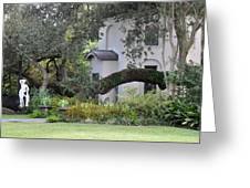 Southern View Greeting Card