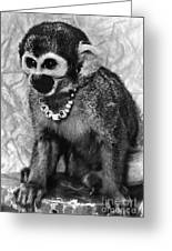 Space Monkey: Baker, 1979 Greeting Card