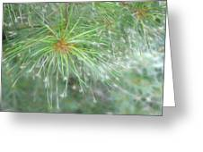 Sparkly Pine Greeting Card