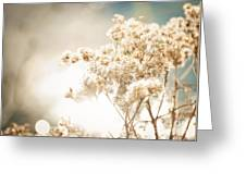 Sparkly Weeds Greeting Card