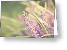 Speak Softly Greeting Card