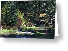 Spearfish Canyon Greeting Card