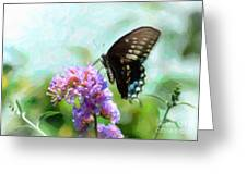 Spicebrook Swallowtail Ds Greeting Card