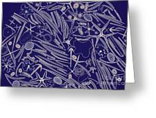 Spicules Of Marine Sponges, Etc. Lm Greeting Card