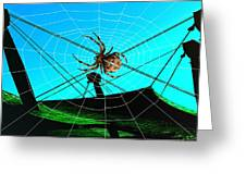 Spider On The Olympic Roof Greeting Card