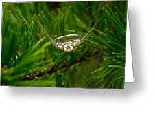 Spider Webs And Diamond Rings 10 Greeting Card