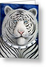 Spike The Tiger Greeting Card