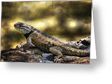 Spiny Lizard Greeting Card