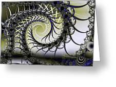 Spiral Web Greeting Card