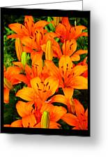 Spiritual Bouquets At St. Francis Cathedral Greeting Card