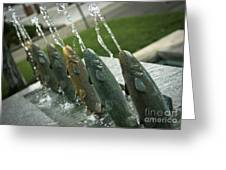 Spitting Fish Greeting Card by David Taylor