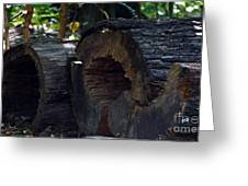 Split A Piece Of Wood Greeting Card