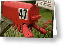 Sponge Bob's Mail Box  Greeting Card