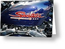 Sportster Greeting Card