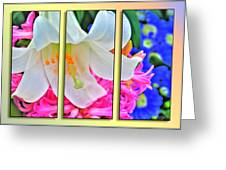Spring Again Triptych Series Greeting Card