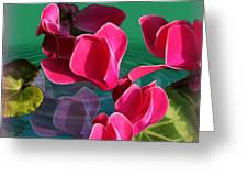 Spring Cyclamen Greeting Card