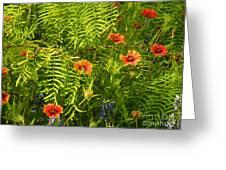 Spring Filter Greeting Card