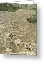 Spring Flood, Nicola River, Canada Greeting Card