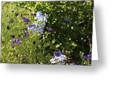 Spring Garden 2 Greeting Card