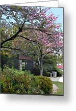 Spring In Bloom At The Japanese Garden Greeting Card