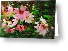 Spring Is In Blossom Greeting Card