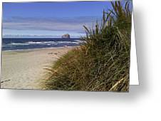 Spring On The Beach  Greeting Card