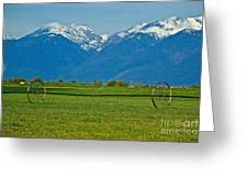 Spring On The Missions Greeting Card