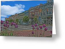 Spring Tulips Downtown Georgetown Greeting Card
