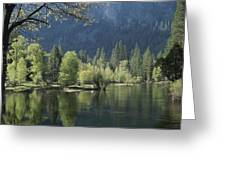 Spring View Of The Merced River Greeting Card